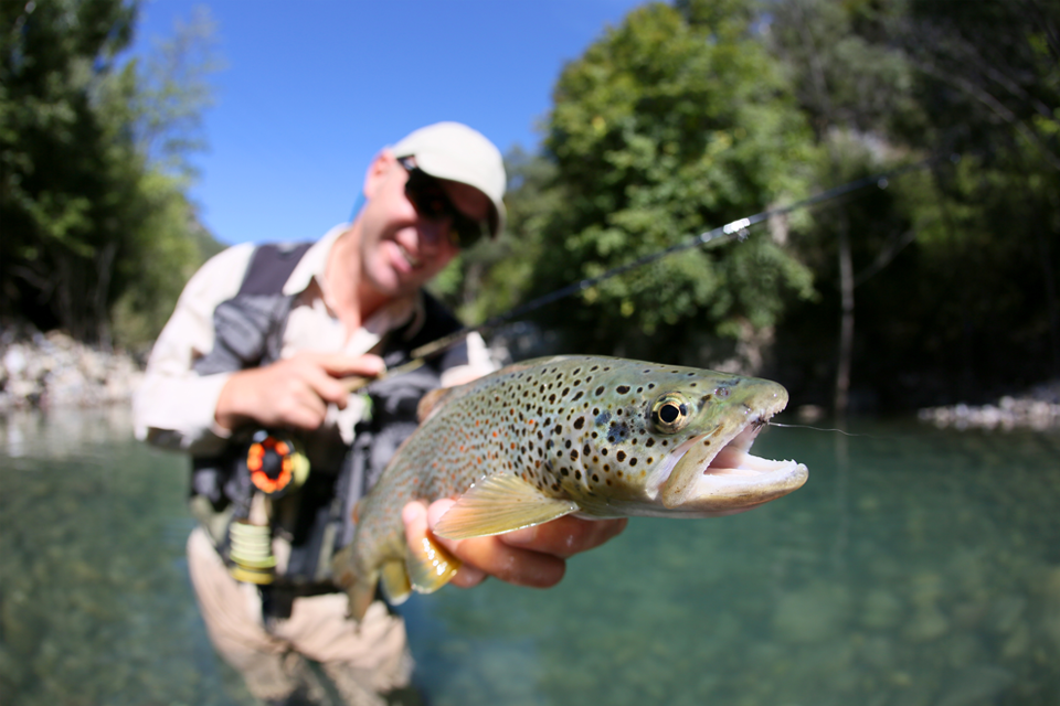 Lure & Fly Fishing